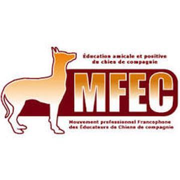 partner-MFEC
